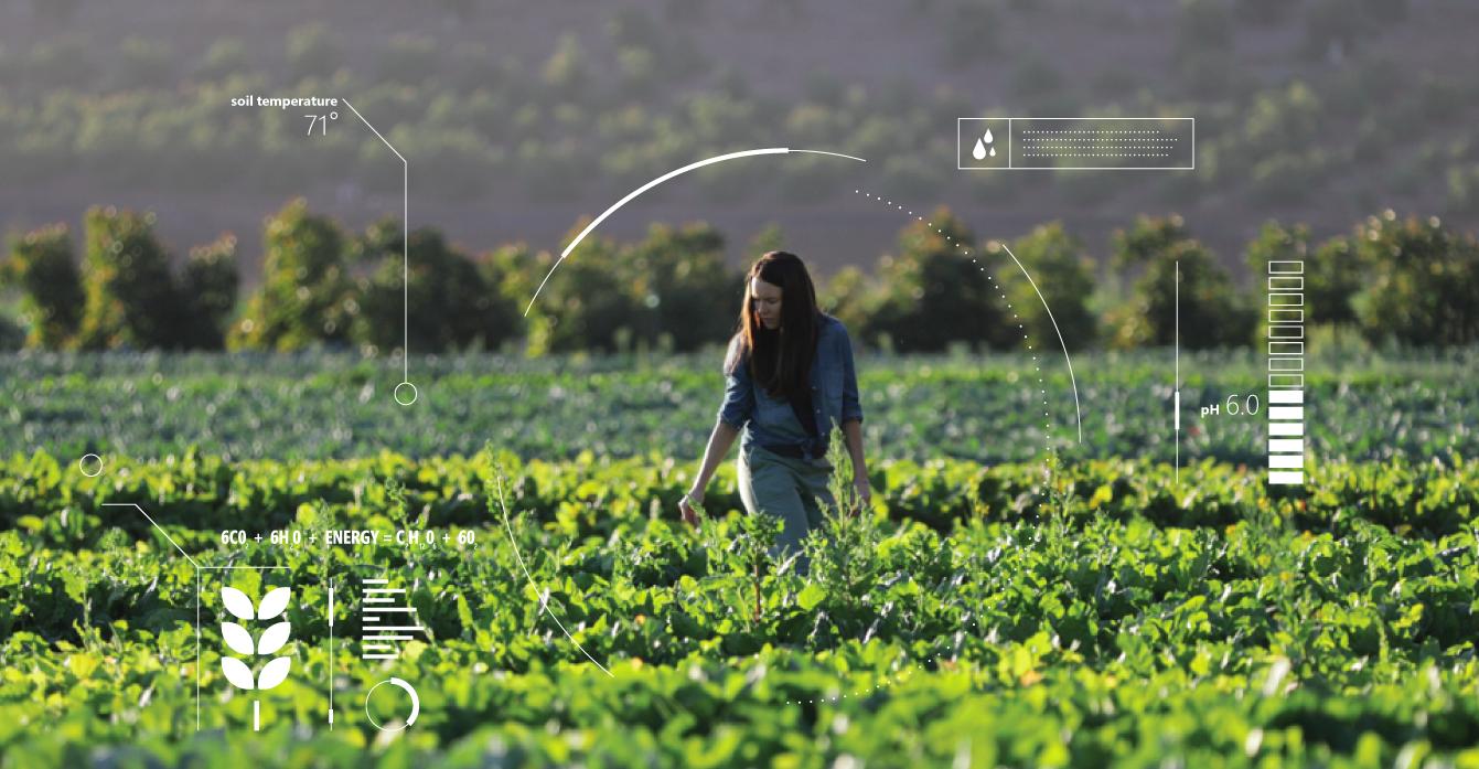 Microsoft ডেভেলপ্ করছে আর্টিফিসিয়াল ইন্টেলিজেন্স কৃষিতে ব্যবহারের জন্য